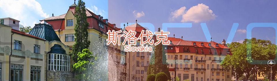 斯洛伐克上網