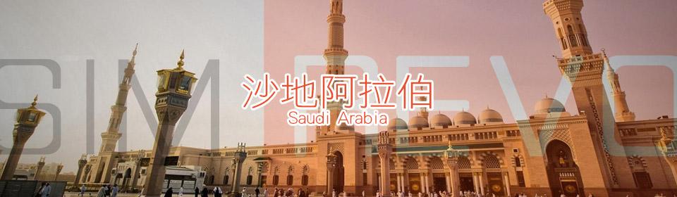 沙地阿拉伯上網